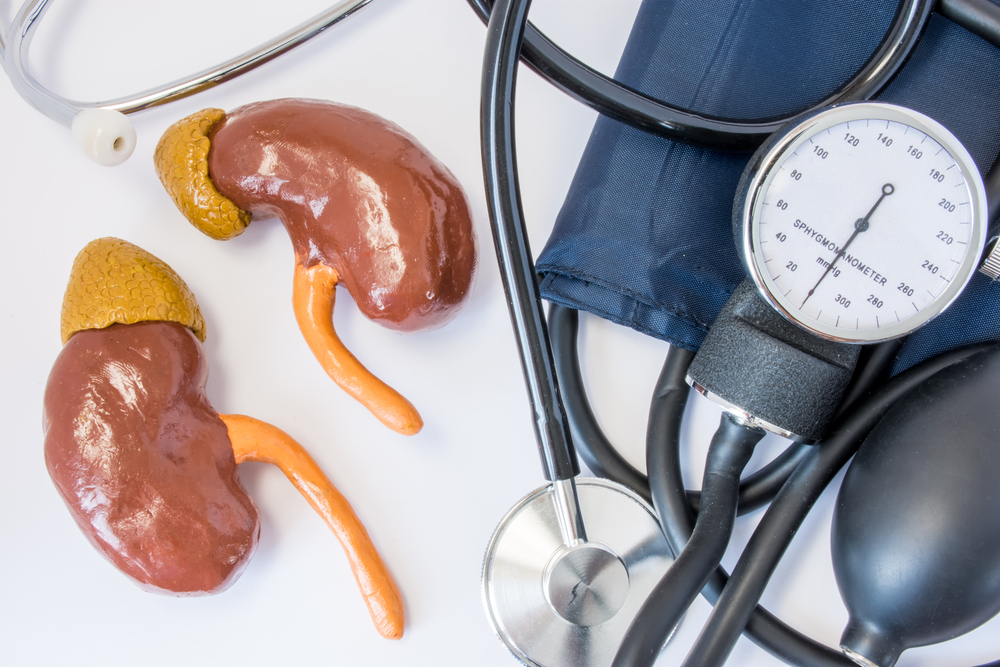 Реноваскулярная гипертензия, лечение, причины, симптомы,  профилактика.