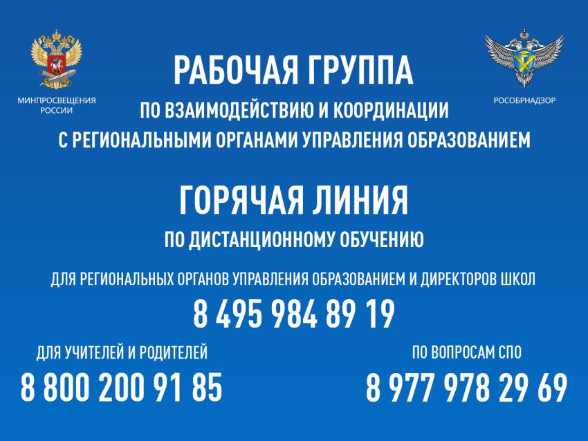 Общеобразовательные учреждения: типы, виды, различия. дошкольные образовательные учреждения :: businessman.ru