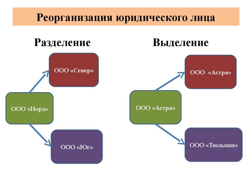 Виды и правила реорганизации предприятий