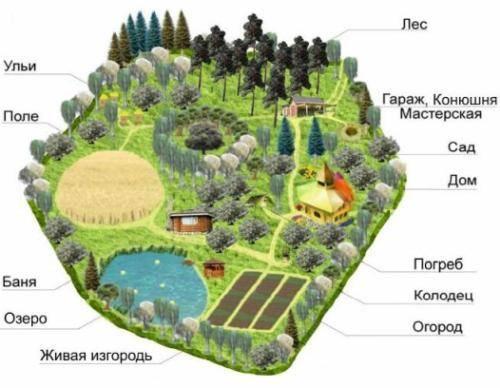 Пермакультура в россии и за рубежом