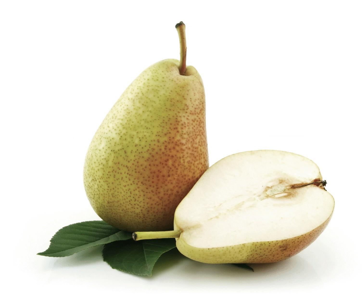 Груша - польза и вред, состав, калорийность. рецепты из груши. лучшие сорта