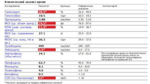 Mchc в анализе крови – что это такое? средняя концентрация гемоглобина в эритроците – анализ крови, расшифровка, норма у женщин, мужчин, детей