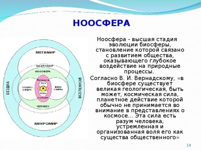 Ноосфера — википедия