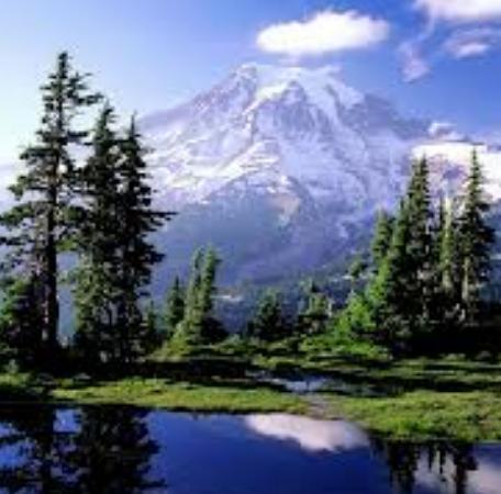Рекреационные ресурсы мира: виды и их использование