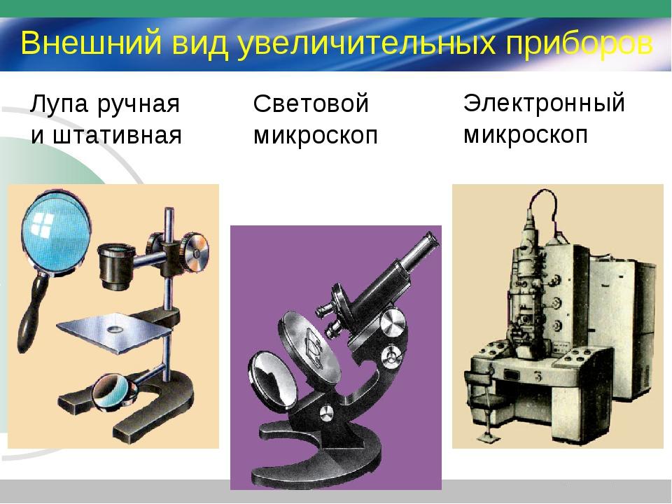 Микроскоп. важность использования в современном мире.
