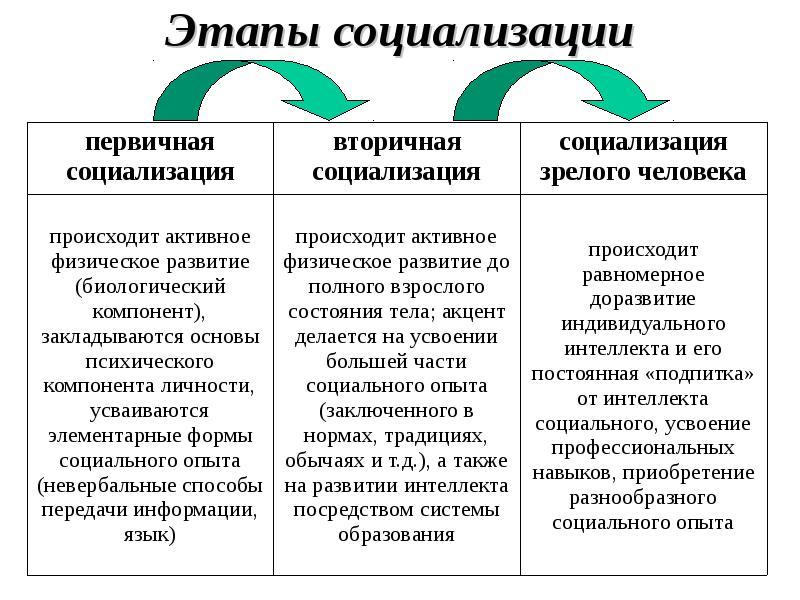 Основные этапы социализации личности: стадии, когда завершается процесс, таблица