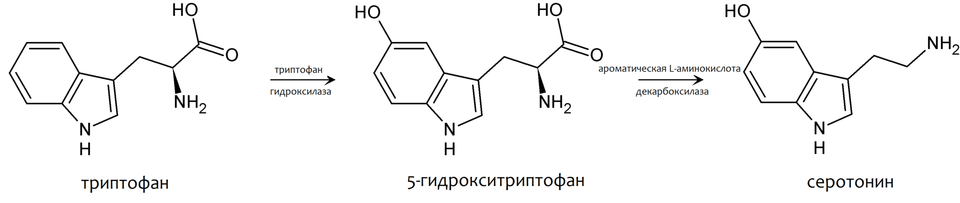 Сиозс. серотонин, депрессия, антидепрессанты
