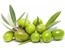 Сорта оливок — википедия. что такое сорта оливок