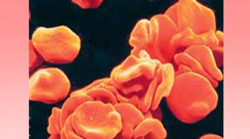 Система гемостаза: тромбиновое время