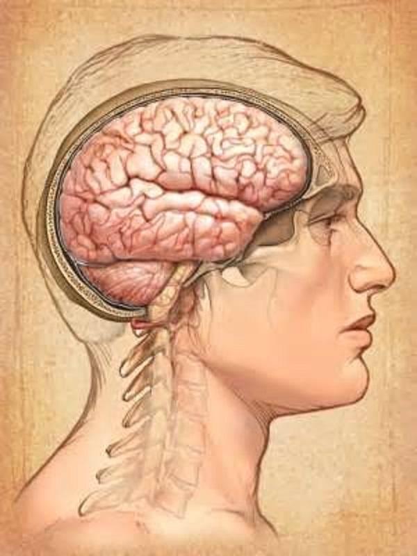 Ипохондрия: симптомы и лечение. как избавиться от психического расстройства самостоятельно? причины мнительности