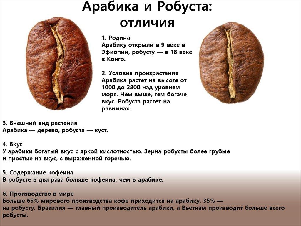 Кофе робуста: что это такое, описание, состав, виды, обжарка, где растет
