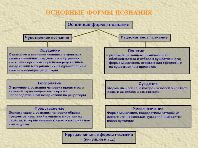 Рациональное познание - формы познания, характеристика