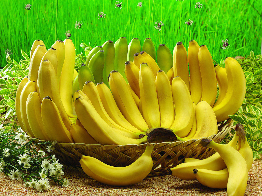 Банан (род) — википедия переиздание // wiki 2