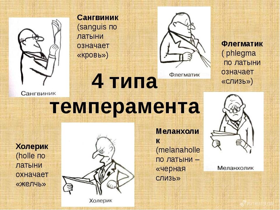 Кто такой флегматик - характеристика темперамента в общении, отношениях и работе