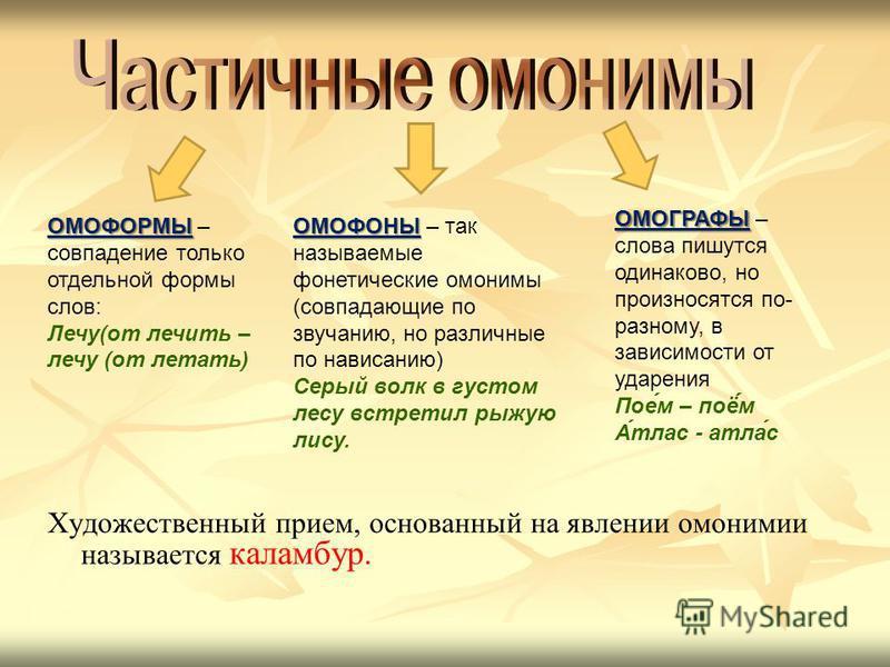 Что такое омонимы? примеры