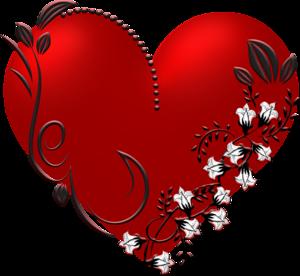 Сердце человека: особенности строения, функции и заболевания