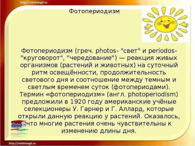 В чем разница между фотопериодизмом и фототропизмом - 2020 - новости