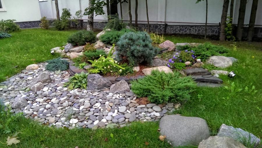 Рокарий своими руками: подбор камней, растений, пошаговое создание, идеи с фото – zelenj.ru – все про садоводство, земледелие, фермерство и птицеводство