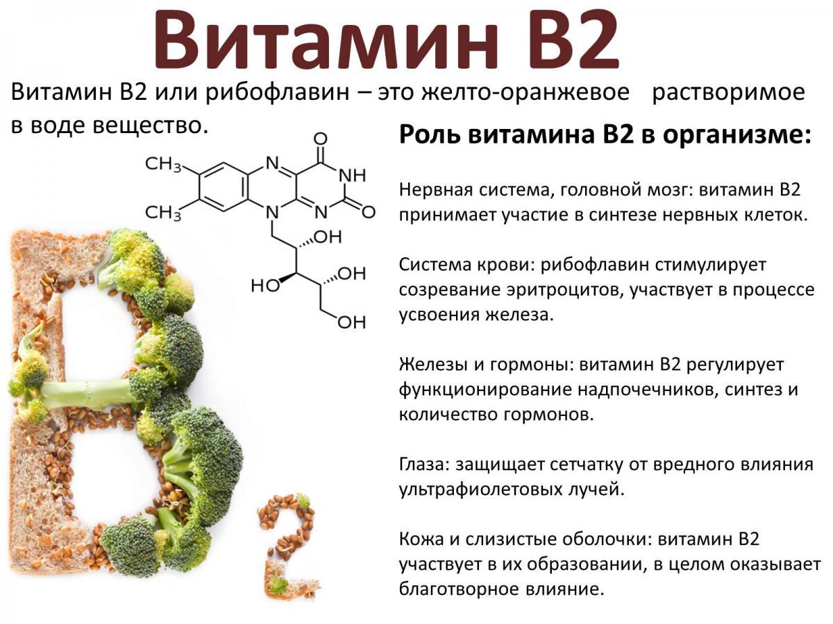Ниацин и ниацинамид (витамин b3) - холестерин - 2020