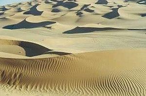 Что такое пустыня и кто там живёт?