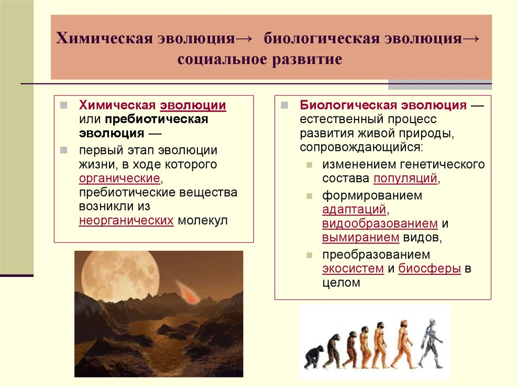 Краткая характеристика теории эволюции и ее развитие