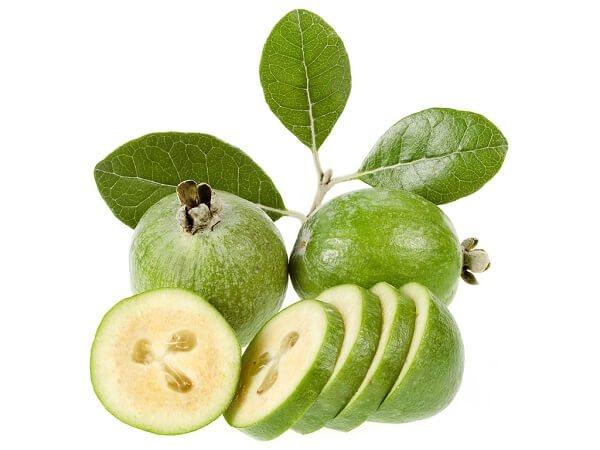 Фейхоа: польза и вред, для организма, как определить спелый плод, целебные рецепты из фейхоа - знай юа