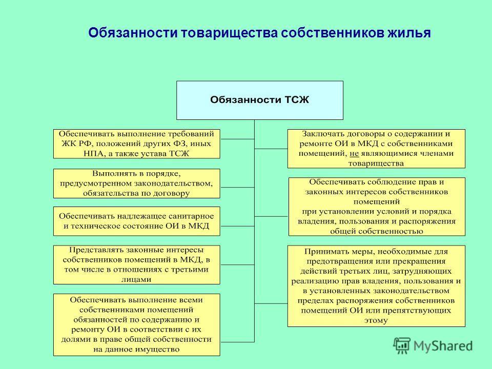 Тсж: что это такое, плюсы и минусы, как организовать