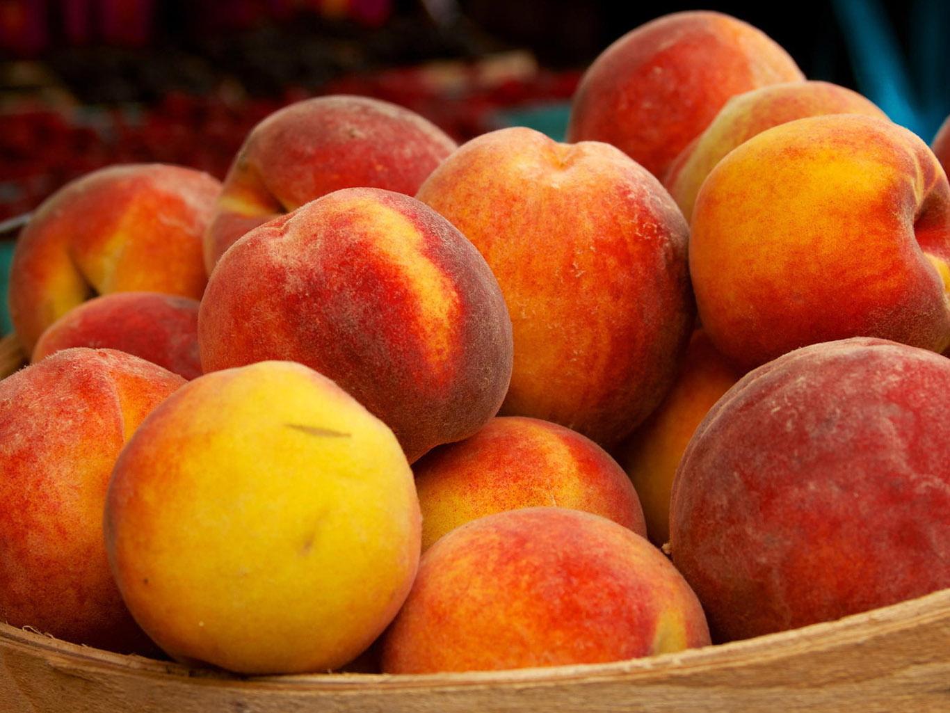 Персик: как выглядит, как и где растет, как цветет персиковое дерево