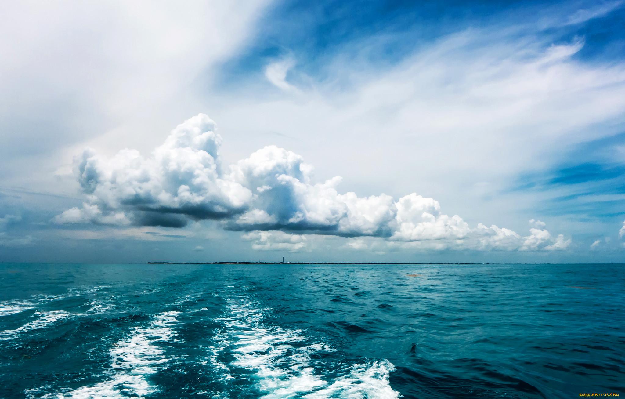 Сколько и какие океаны есть на земле: карта, названия, описание, подводный мир, фото и видео  - «как и почему»