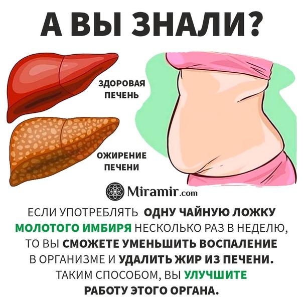 Гепатоз печени: причины, симптомы, диагностика и лечение