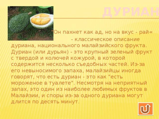 Фрукт дуриан цибетиновый. фото плодов, где растет, чем пахнет, какой на вкус