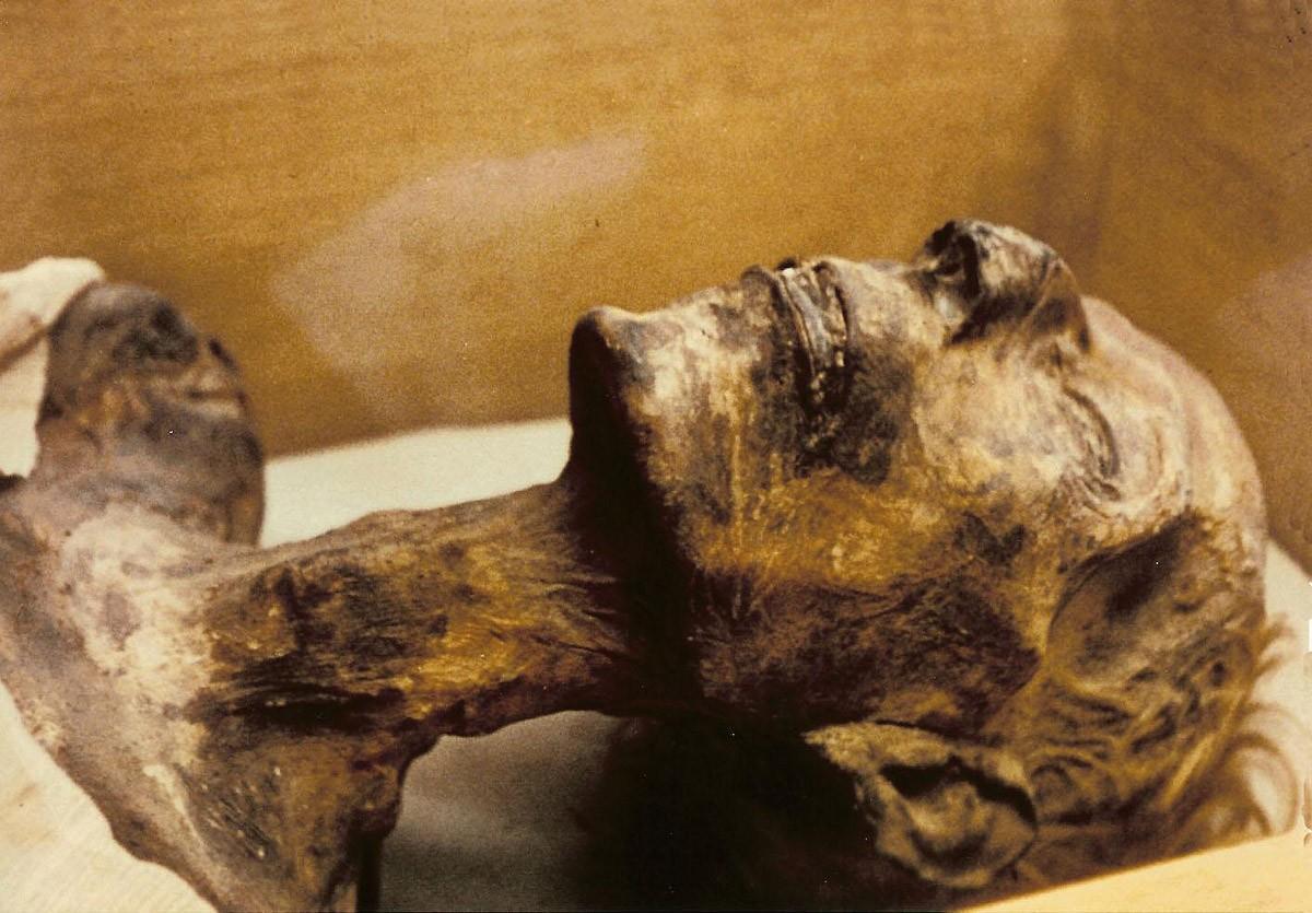 Что такое мумия? чем бальзамируют тело умершего? египетские мумии :: syl.ru