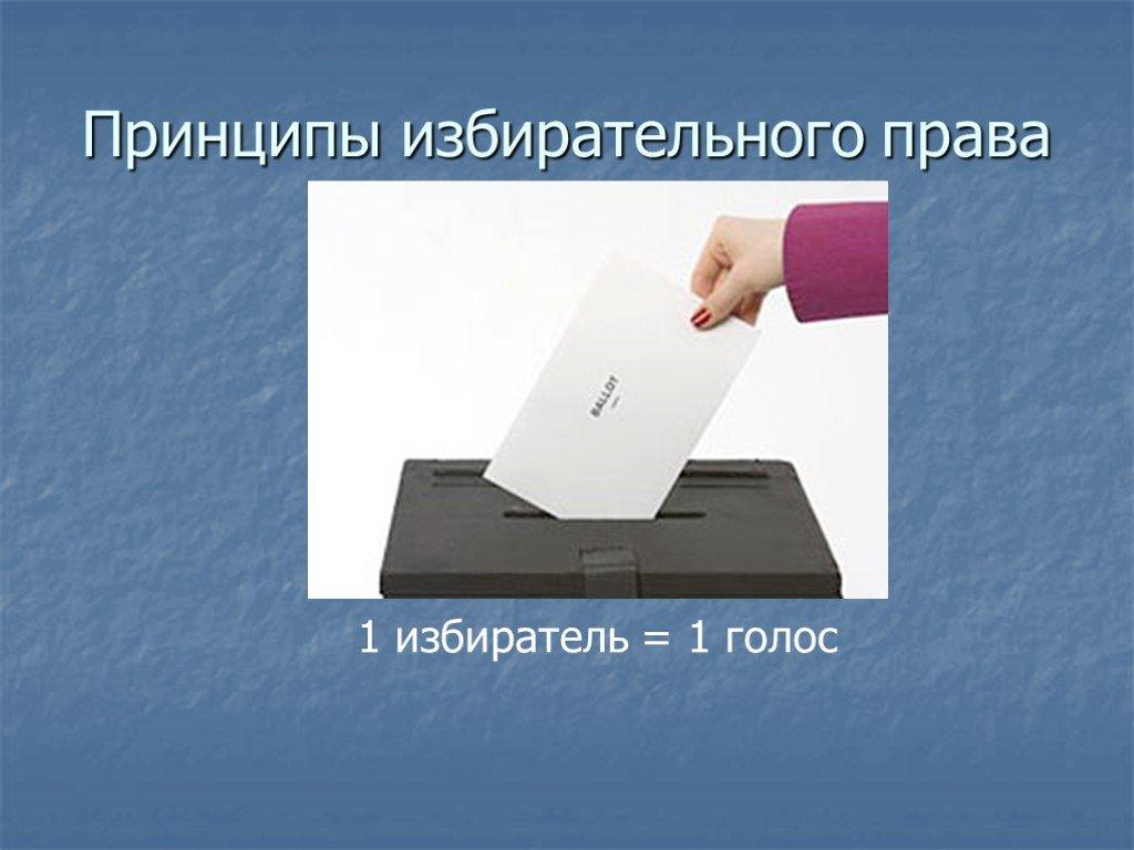 Избирательная система рф: понятие, виды и типы, принципы избирательного процесса :: syl.ru