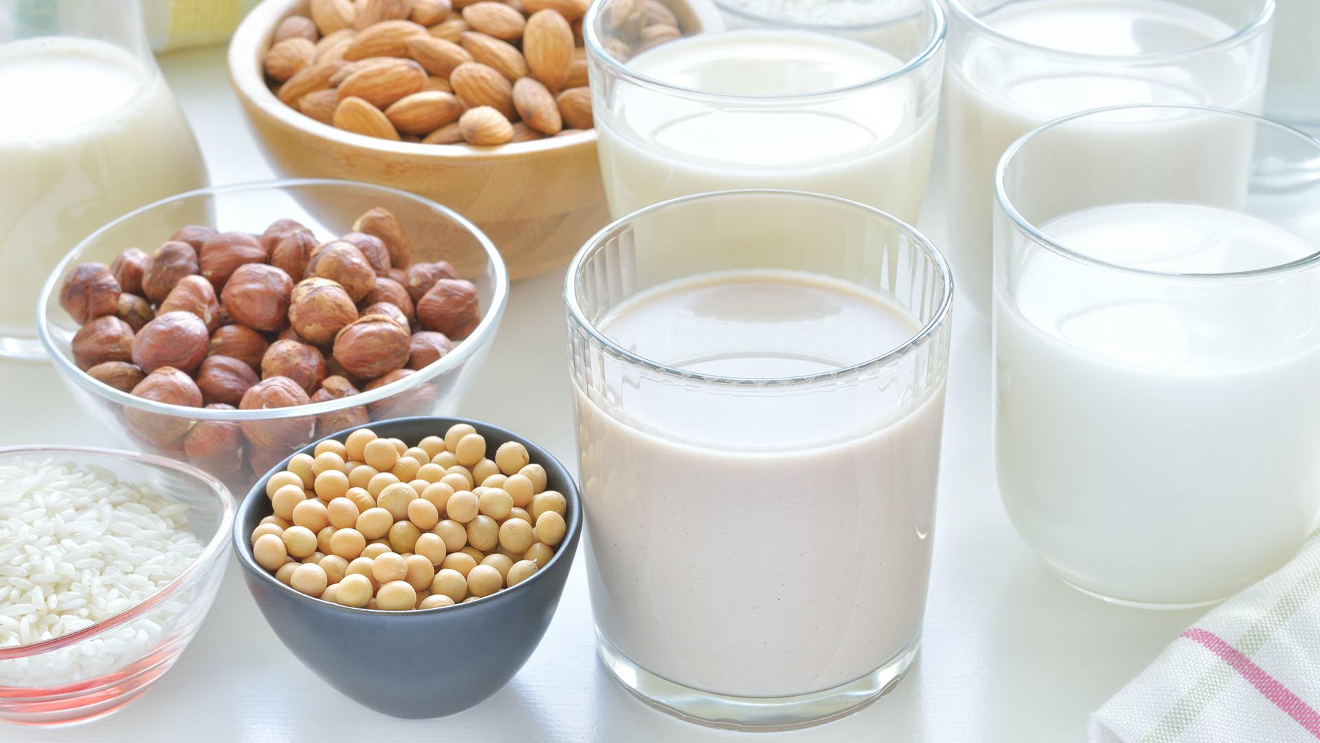 Чем заменить коровье молоко? растительное молоко рецепты | культура здоровья