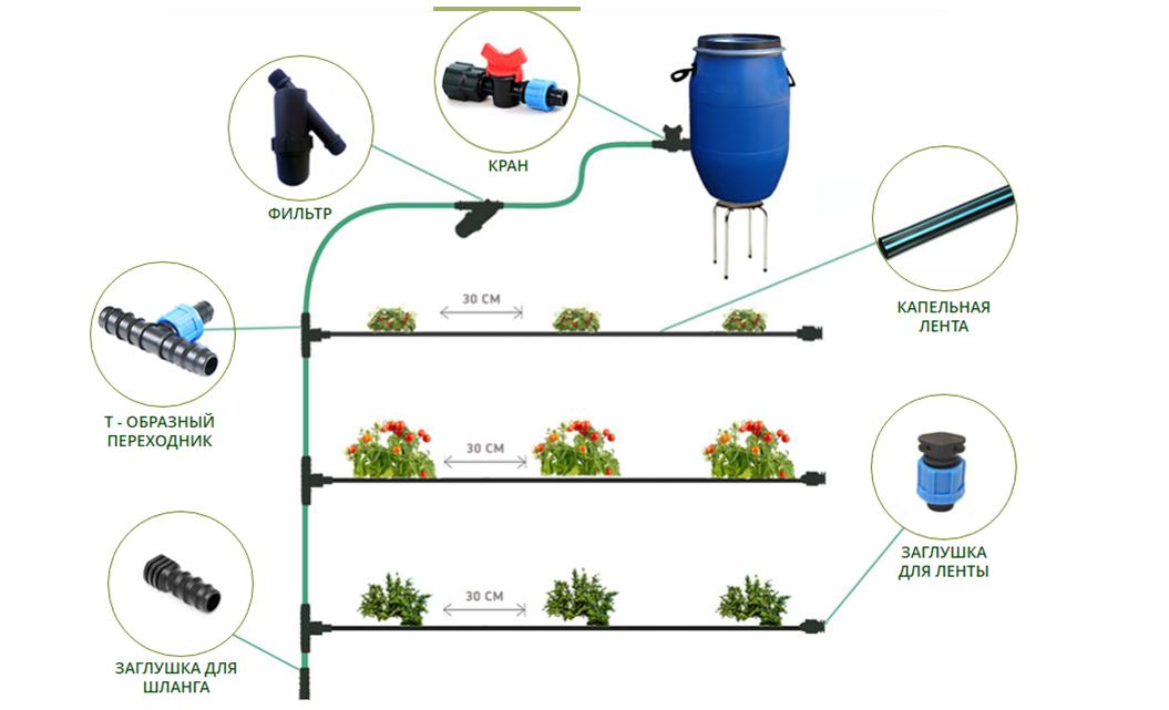 Система капельного полива: разные виды и самостоятельное изготовление