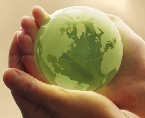 Что такое экологическое право?