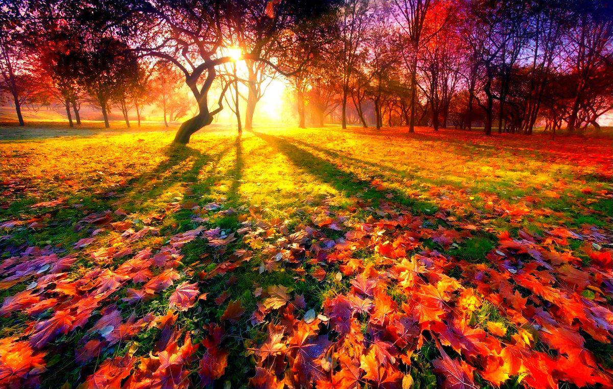 Осень — ддт