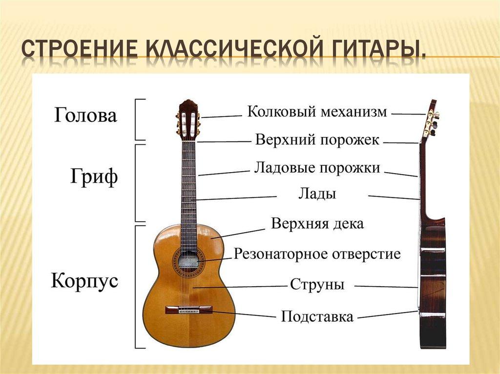 Краткая история гитары | мы рассказываем о гитарах