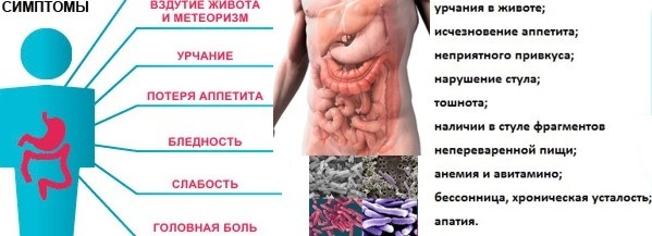 Дисбактериоз кишечника: симптомы, лечение, диета