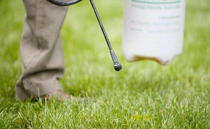Ядохимикаты: для чего нужны, польза и вред химических веществ для сельского хозяйства, группы пестицидов