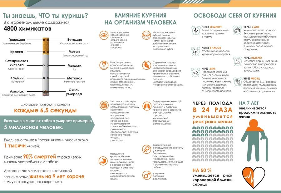 Никотин — википедия. что такое никотин