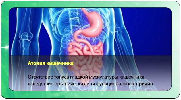 Атония кишечника – что это такое, симптомы и лечение