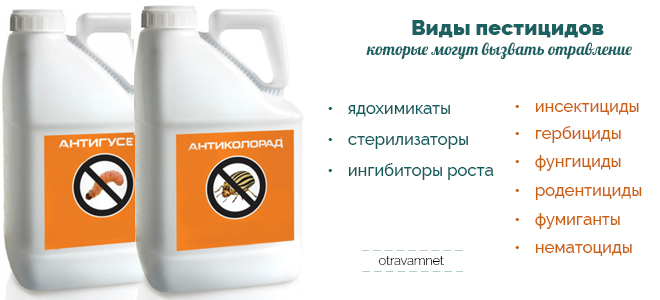 Родентицид | справочник пестициды.ru
