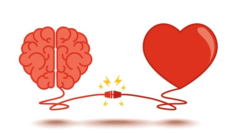 Наука о любви: как врачи и психологи изучают наши чувства — wonderzine