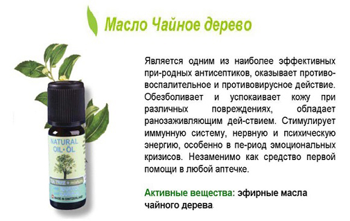 Чудеса с маслом жожоба — правильное применение полезных свойств | здорова и красива