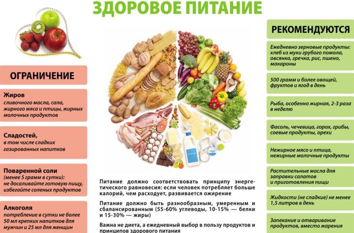 Питаемся рационально: основные принципы и особенности рациональное питание: основные принципы