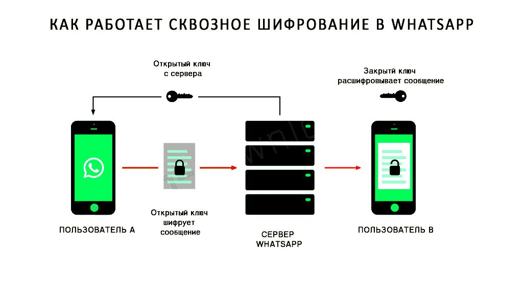 Криптостойкие андроиды. почему шифрование в signal, whatsapp, telegram и viber не защитит твою переписку от взлома — «хакер»