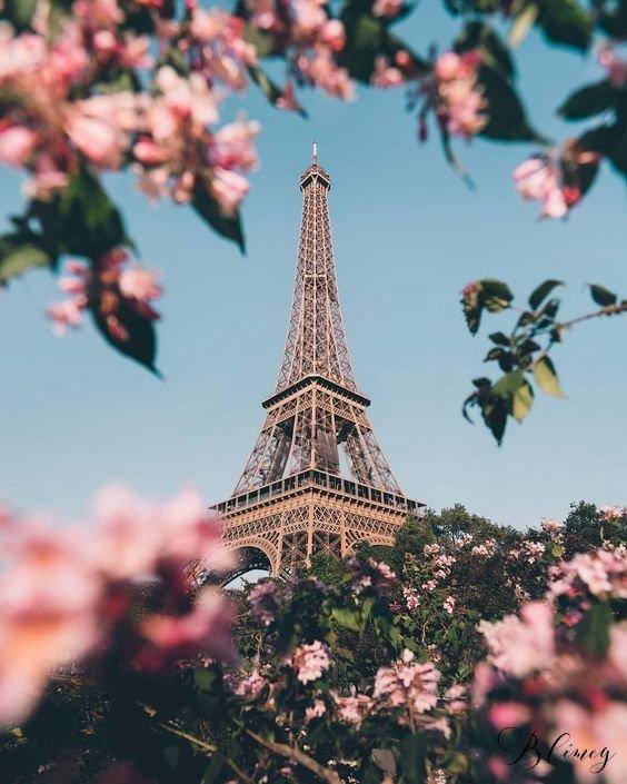 Французы - происхождение народа, где и как живут, фото