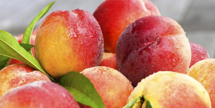 Что такое персик: как выглядит, где растет и как цветет
