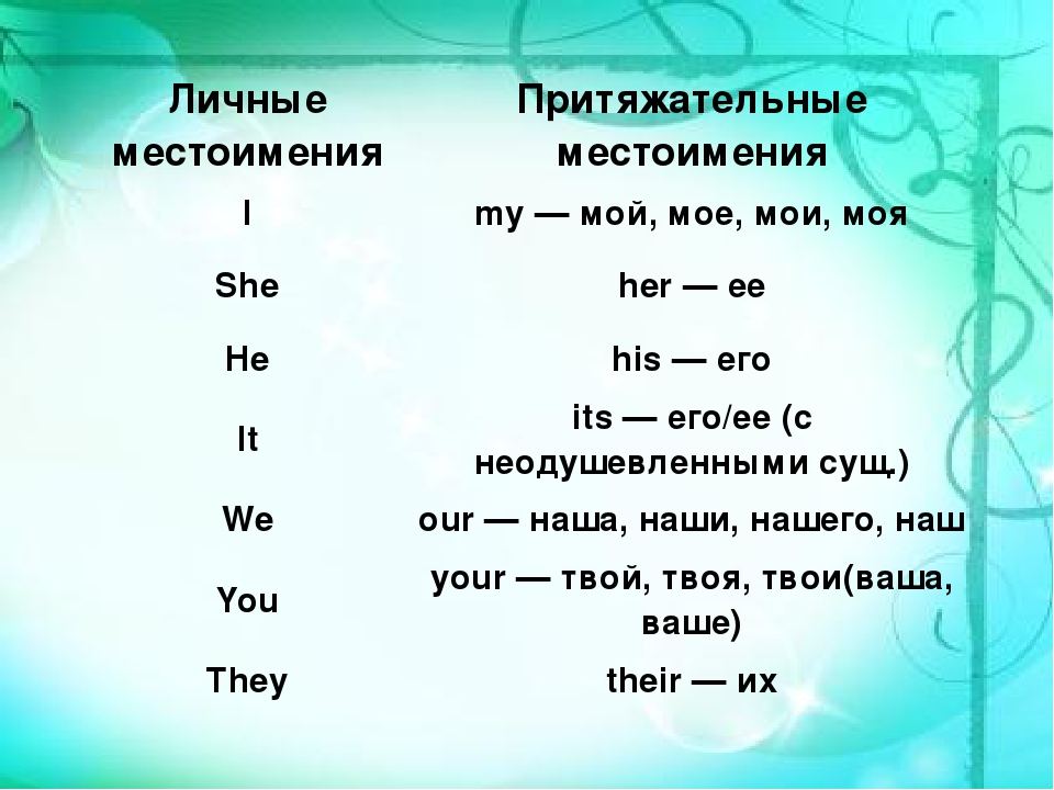 Притяжательные местоимения (possessive pronouns)